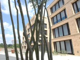 STrauma Landschaftsarchitektur Berlin landscape architects Campus Wüstenrot Außenanlage
