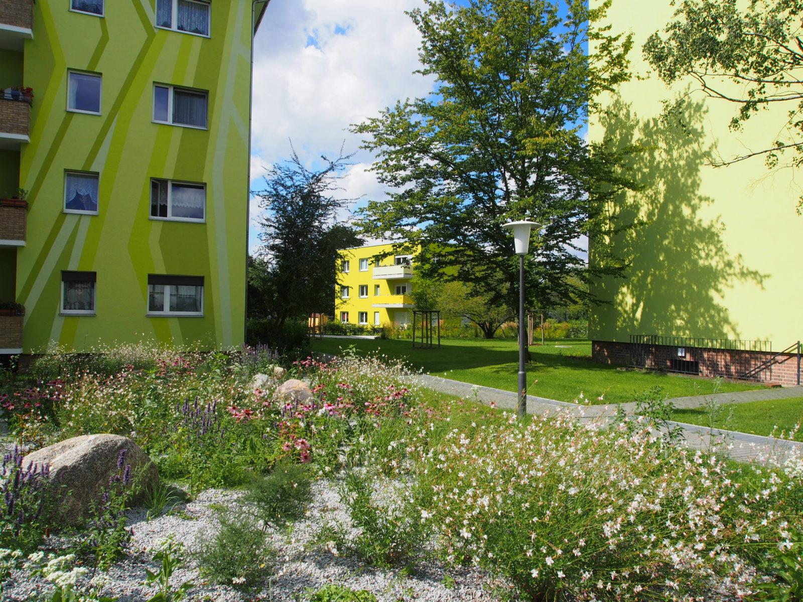STrauma Landschaftsarchitektur Berlin landscape architects Kormoranweg Berlin Blumen