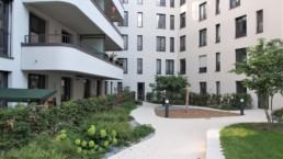 STrauma Landschaftsarchitektur Berlin landscape architects Beuthstrasse Berlin Wege und Pflanzungen