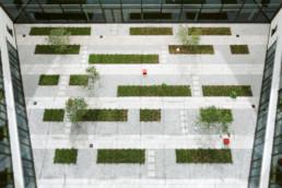 STrauma Landschaftsarchitektur Berlin landscape architects E Plus Düsseldorf Innenhofpflanzung
