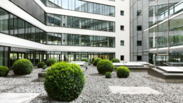 STrauma Landschaftsarchitektur Berlin landscape architects E Plus Düsseldorf Pflanzung im Innenhof mit Steingarten
