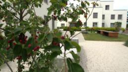 bollinger fehlig Lerbacher Weg Berlin st raum a landschaftsarchitektur